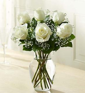 Love's Embrace™ Roses – White